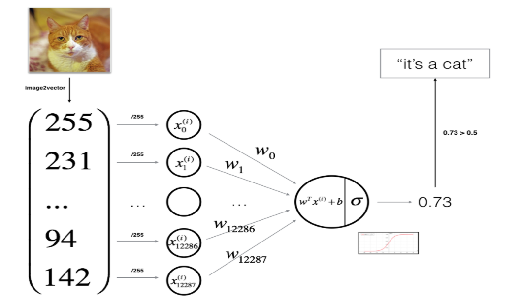 Logistic Regression with a Neural Network: Cat Recognizer